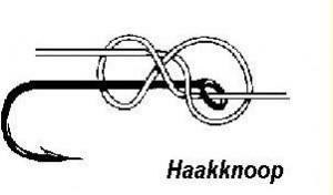 haakknoop