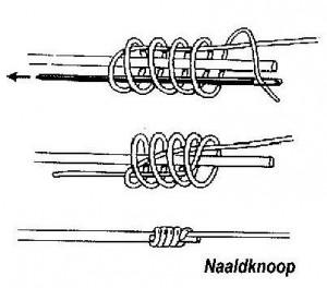 naaldknoop